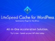 cara setting litespeed cache